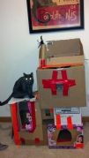 Kid Made Kitty Castle