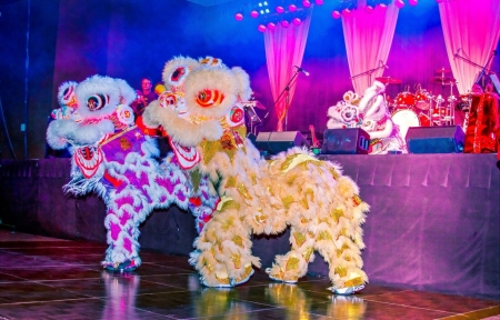 Asian Lion Dance