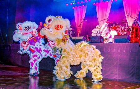Asian Lion Dance
