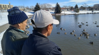 Watching the Ducks on Capital Pond