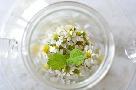 chamomile-flowers-and-mint