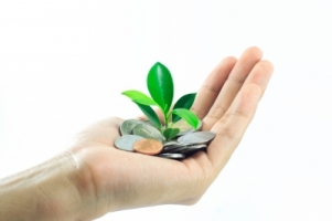 hand with coins and plant