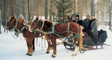 A Snowy Sleigh Ride for New Years